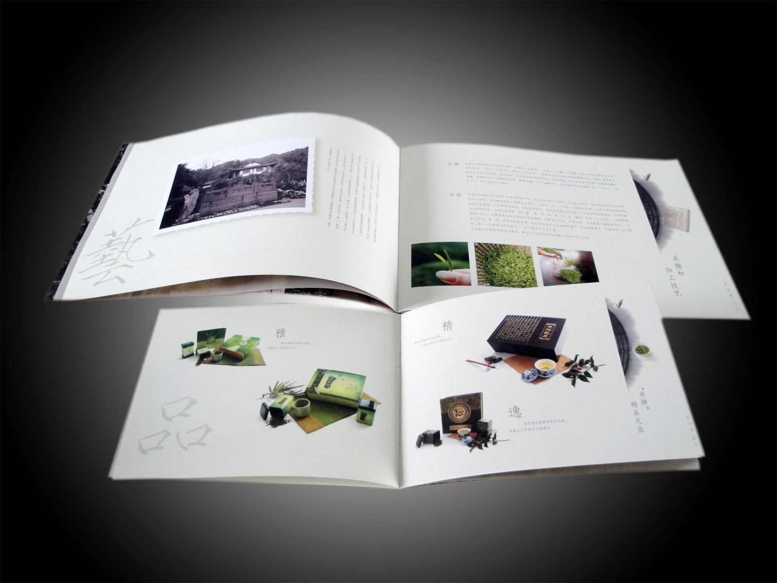 چاپ دیجیتال کاتالوگ حرفه ای